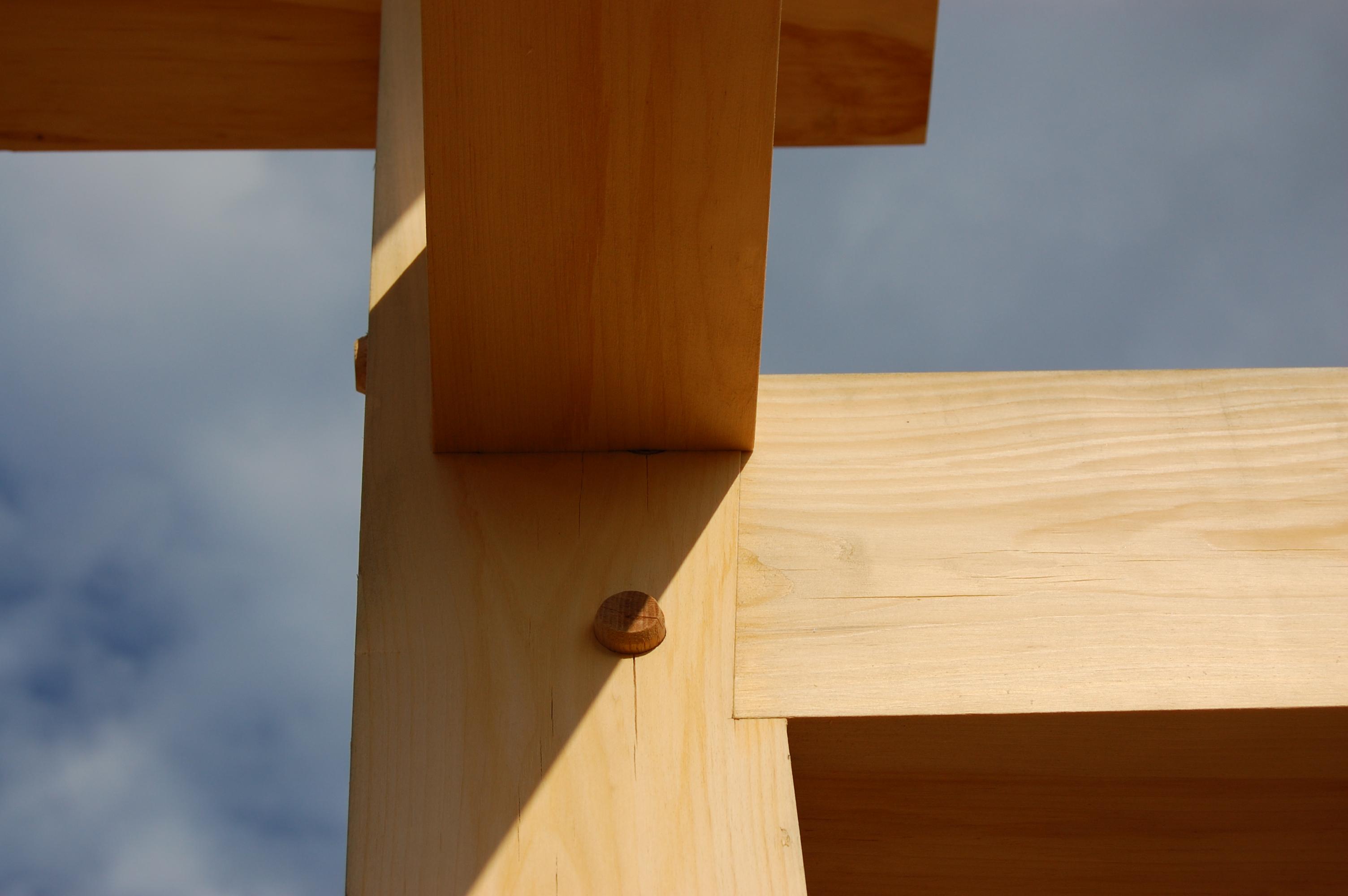 New Workshop: Timber Framing Plus